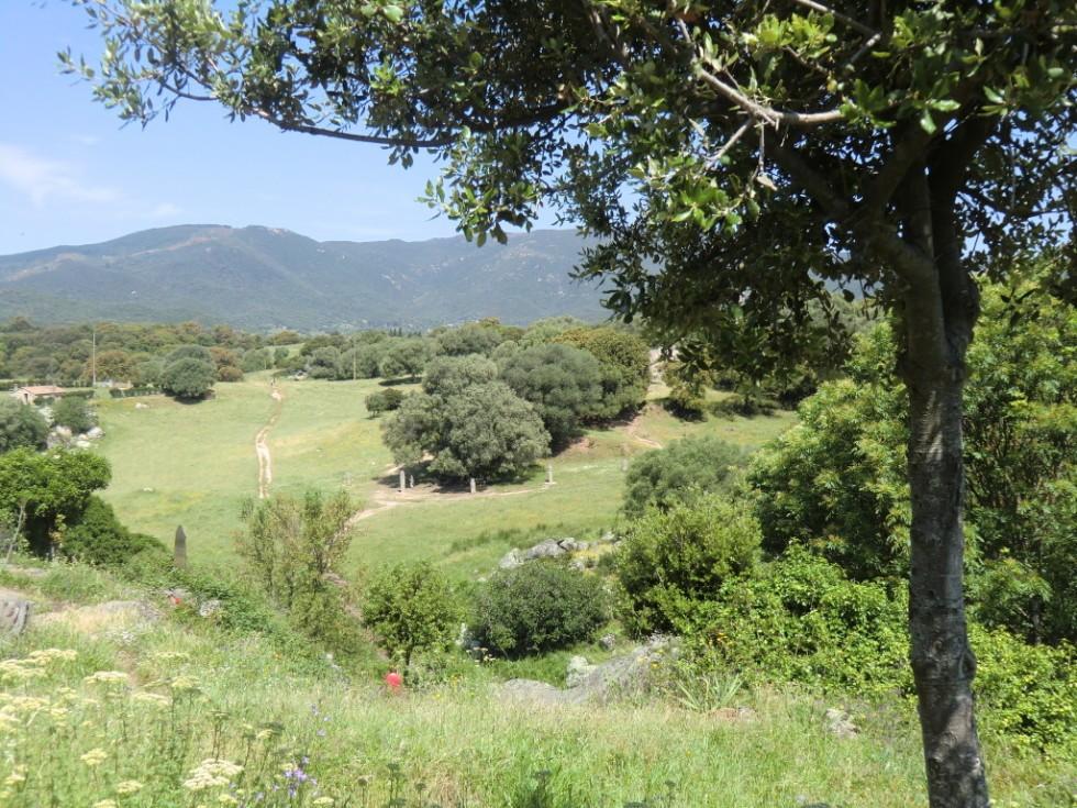 Gelände von Filitosa