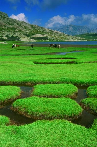 Plateau bei dem See Nino auf Korsika