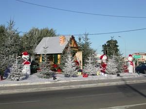 Weihnachten auf Korsika