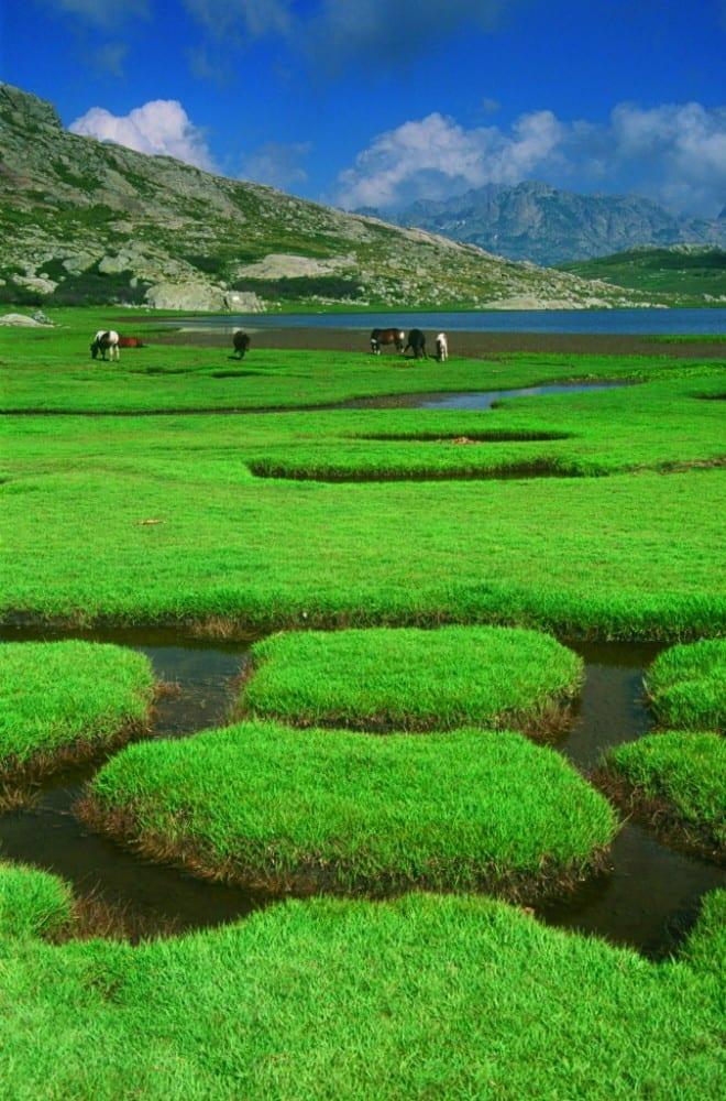 Plateau beim Nino-See