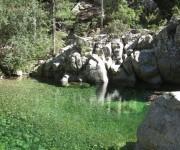 Gumpen im Tavignano