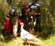 Robert Kran unter einem Olivenbaum