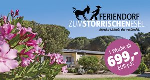 Feriendorf Korsika Urlaub